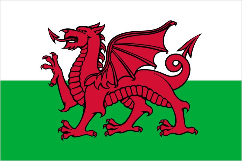 ウェールズ国旗の図版